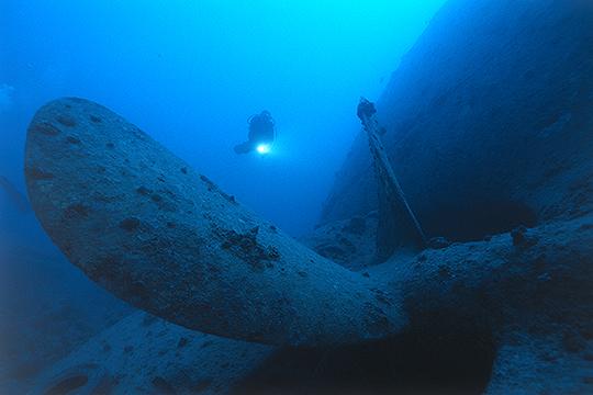 Schiffsschraube