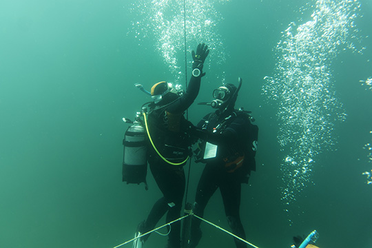 Open Water Diver Freiwasser